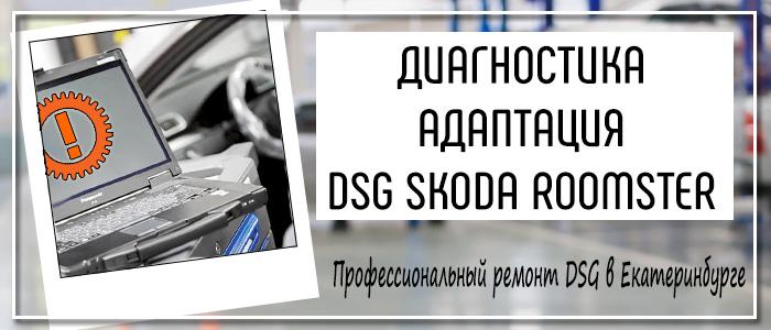 Диагностика Адаптация ДСГ Шкода Румстер